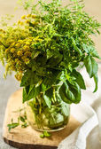 Aromatic fresh herbs — Stock Photo
