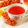 Sea buckthorn tea — Stock Photo