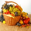 Autumn fruits — Stock Photo #30682179