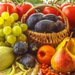 Autumn harvest — Stock Photo #30682255