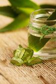 Aloe vera-extrakt — Stockfoto