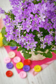 Still life with spring flowers and colorful buttons — Stock Photo