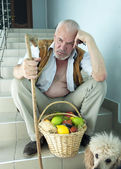Sad man with a dog and a basket of fruit — Stock Photo
