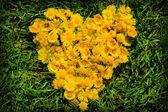 Yellow heart — Stock Photo