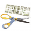 Scissors cut a hundred dollar bill into many parts — Stock Photo