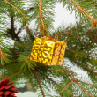 Golden Christmas gift on the Christmas tree — Stock Photo
