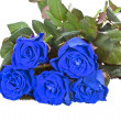 Bouquet of blue roses — Stock Photo #37814981