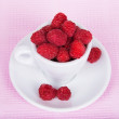 Fresh raspberries in a white cup — Stock Photo #49364059