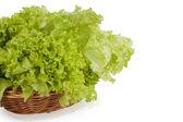 Green lettuce in a wicker basket — Stock Photo
