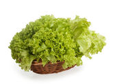 Green lettuce in a wicker basket — Foto de Stock