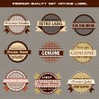 Premium quality set of vector vintage labels — Stock Vector