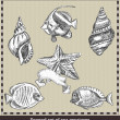 Set of sea fish,seashell and starfish. Retro style — Stock Vector