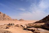 Sinai desert — Stock Photo