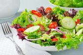 混合的沙拉 — 图库照片