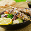 Souvlaki - Stock Photo