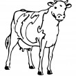 Drawing Of A Cow — Stock Photo