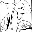 Hand Drawn Arum Lily — Stock Photo
