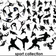 Stock Photo: Sport collection vector