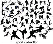 Sport collection vector — Stock Photo