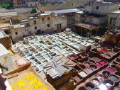 The colourful leather tanning of Fes, Morocco — Stock Photo