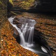 Stock Photo: Beautiful waterfall  cascade and fall foliage