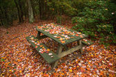 Picnic area during fall season with red maple leaves on the table — Zdjęcie stockowe