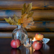 Autumn Still Life with Apples — Stock Photo