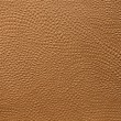 Embossed leather — 图库照片