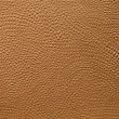 Embossed leather — Lizenzfreies Foto