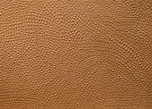 Embossed leather — Foto de Stock