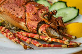 Lobster — Stock Photo