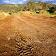 Stock Photo: Off road driving tracks
