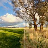 Fence dividing drought and rain — Stock Photo