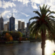 Melbourne and the yarra river — Stock Photo #46978443