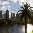 Melbourne and the yarra river — Stock Photo