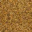Stock Photo: Malt closeup
