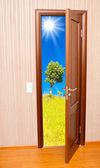 Yaz aylarında kapı — Stok fotoğraf