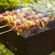 Stock Photo: Grilling in garden
