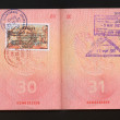 Passport stamps — Stock Photo #30801533