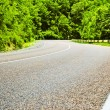 Asphalt road in the forest — Stock Photo