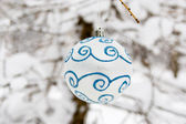 Kerstmis bol in winter forest — Stockfoto