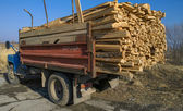 Truck and firewood — Stock Photo