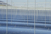 Renewable Energy: Solar as the best way to produce green energy — Stock Photo