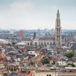 Antwerp Skyline — Stock Photo