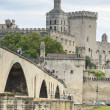 Bridge and Cathedral, Avignon, France — Stock Photo