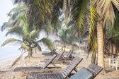 Krásná tropická pláž s palmami — Stock fotografie
