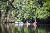 Beautiful tropic scenics — Stock Photo