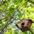 Birdhouse — Foto Stock #37316759