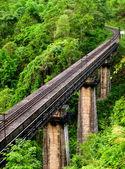 Railtrain — Stock Photo