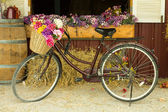 Bicycle — Stockfoto